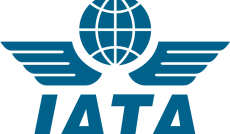6.5% surge in domestic travel demand: IATA
